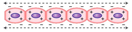 semua sel terdepolarisasi